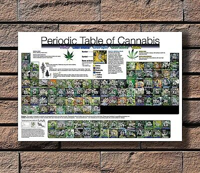 Art Poster 24x36 27x40 - Periodic_Table_of_Cannabis T-3479