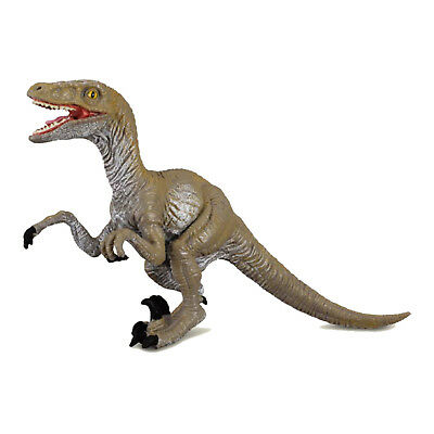 Wonderful VELOCIRAPTOR  Dinosaur Model by CollectA 88034 BNWT