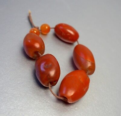 5 Authentic Pema Raka Carnelian Beads, 500-2000+ Years Old