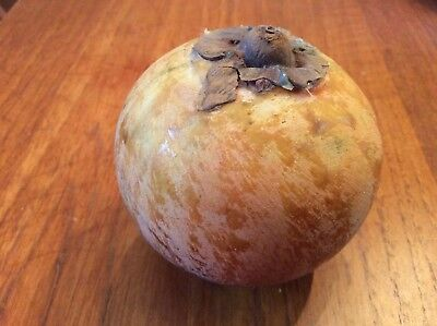 Vintage Italian Alabaster Stone Fruit,Persimmon Hand Carved Italy
