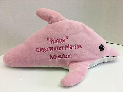 Plush Winter From Dolphin Tale Grey With White Tail Owned From New
