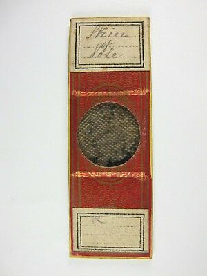 """Antique Microscope Slide by Amos Topping. """"Skin of Sole""""."""