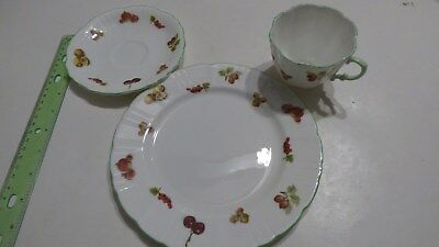 FRUIT & NUTS TEA CUP & SAUCER & Plate HAMMERSLEY & CO CHINA ENGLAND 3 set