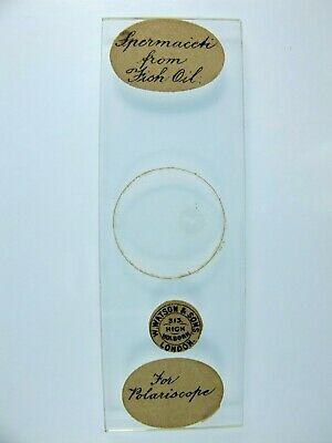 Antique Microscope Slide by Watson. Spermaceti from Fish Oil.