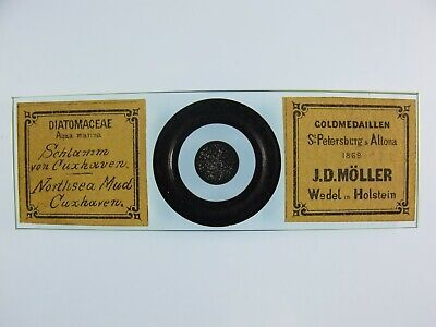 Antique Microscope Slide by J.D.Moller. Diatoms from North Sea Mud. Cuxhaven.
