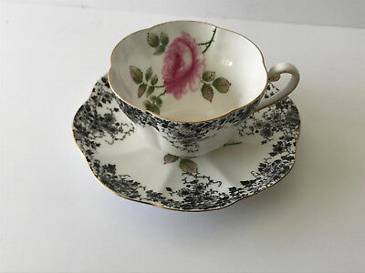 Beautiful SHELLEY Dainty ROSE & Black Flower Border Cup & Saucer #14036