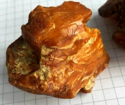 Antique Old Royal Natural Baltic Amber Stone  Butterscotch Toffee White 53,5 Gr