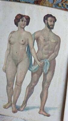 ANTIQUE FRENCH 1930s MEDICAL ANATOMY BROCHURE WITH COLOUR PLATES HOMME et FEMME