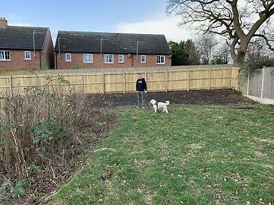 Allotment/Plot Of Land (Nantwich Cheshire)