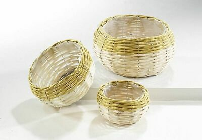 G2191: Flower Set from Wicker, 3-tlg. Flower Pots, Planters Bicolor Curry