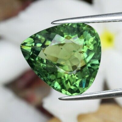 6.90ct 13x11.8mm Pear Natural Unheated Green Apatite, Brazil