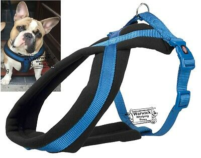 Winter Comfort Dog Harness Soft Fleece Puppy to Adult Blue / Black XS M or M-L