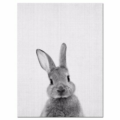 Modern Rabbit Bunny Canvas Oil Painting Wall Art Print Poster Home Room Decor