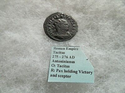 Ancient Roman Empire Coin Tacitus 275 - 276 Antoninianus Pax Victory Scepter