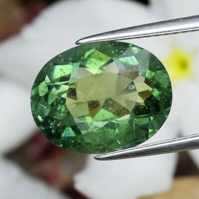 5.07ct 13x10.2mm Oval Natural Unheated Green Apatite, Brazil