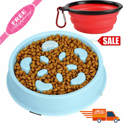 SLOW FEED Dog Food Bowl Non Skid Dish Break Fast Eating Habits Feeder small dog