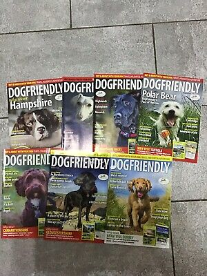 DogFriendly Magazines x 7 Out & About With Your Dog, Travel Holidays Adventure