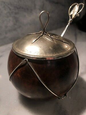 Rare Antique 19th Century Silver Mounted Calabash Tea Caddy And Spoon
