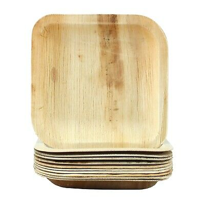 Natural Palm Leaf Plates Small Square 10 Biodegradable Eco-Friendly Party
