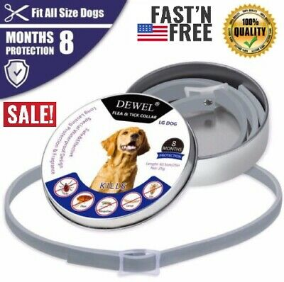 63CM DEWEL DOGS soresto Flea and Tick Collar for Large Dogs 8 Month Protection