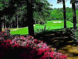 Masters Tournament PARTIAL DAY - AFTERNOON Badge: Tuesday April 9th 2019