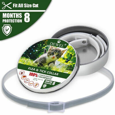 CAT Flea & Tick Collar Pets Cats And Protection 8 Months - DEWEL US