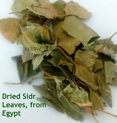 Dried Broken Sidr Leaves Natural Healthy Organic  350 gram ورق سدر نبق مجفف مصري