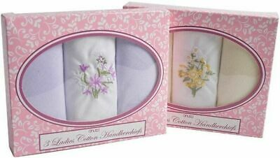 Ladies Handkerchiefs Women Cotton Hankies 3 Pack Boxed Box Embroidered