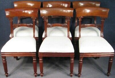 Set Of 6 William IV Solid Mahogany Dining Chairs