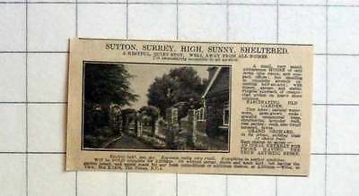 1927 Sutton, Surrey, High Sunny Sheltered, 7 Room House, Half An Acre, 3000 Gns