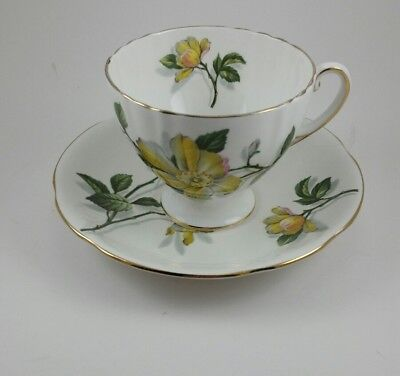 Vintage Royal Standard Fine Bone China Tea Cup and Saucer - England Camillia