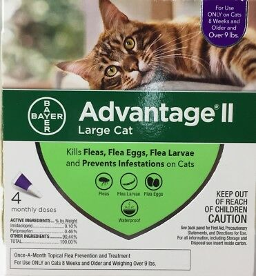 Bayer Advantage II Flea Prevention for Large Cats over 9lbs 4 Doses