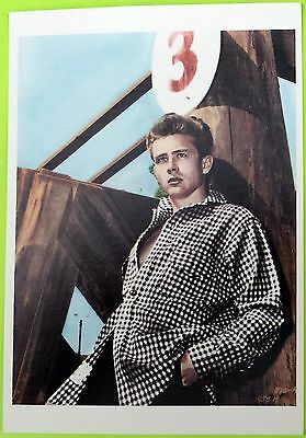 JAMES DEAN: Color Photo Post Card (4¼ x 6 in.) Vintage - Out of print. A classic
