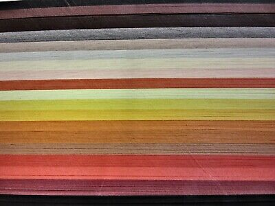 QUILLING PAPER 110gsm 3mm 500 Strips - 19 MIXED AUTUMN COLOURS