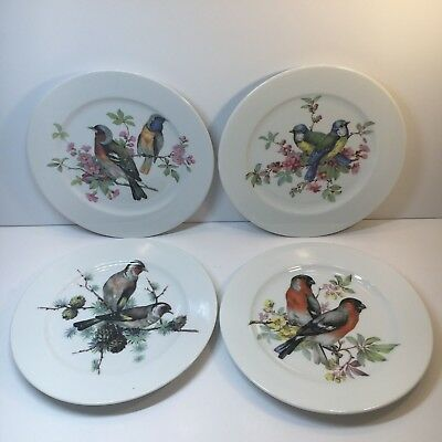 "Set of 4 Schumann Arzberg Bavaria Porcelain Bird Theme 8"" Salad Plates Germany"