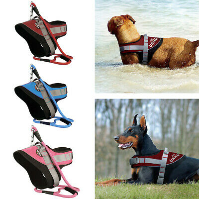 Super Strong Reinforced Straps Large Dog Harness Vest w/ Matching Lead Leash Set