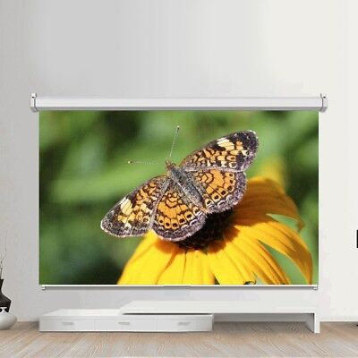 50-120 inch Projector Screen Electric Projection HD Conference Presentation ZZ