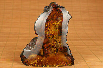 Chinese  man-made amber real scorpion statue collectable Home decoration