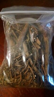 1 oz *WILD* American MANDRAKE Root *PROSPERITY* Protection *BE AWARE*