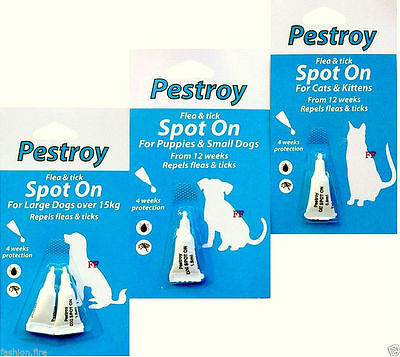 Bob Martin Pack Of Pestroy Flea &Tick Spot On For Puppies Small Dog Cat & Kitten