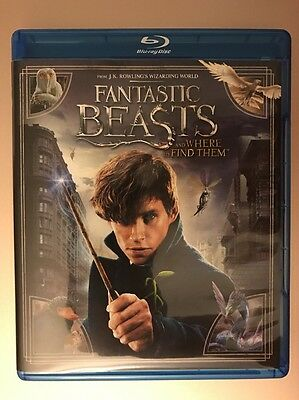 Fantastic Beasts and Where to Find Them (Blu-ray + DVD + Digital HD)