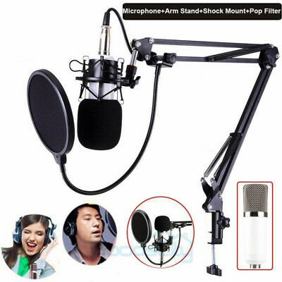 Professional Studio Recording Condenser Microphone Mic + Mount + Stand + Filter