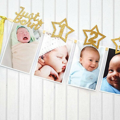 1st Birthday Recording 1-12 Month Photo Baby Shower Bunting Banner Garland Grand