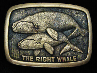 Qh03146 Vintage 1979 **The Right Whale** Solid Brass Bts Belt Buckle