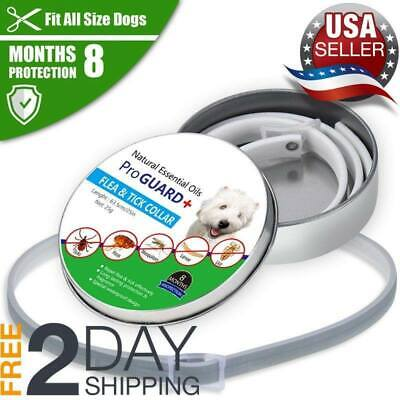 *HOT*DOGS Bayer Seresto Flea And Ticks Collar For Small & Large CATS - 8Months