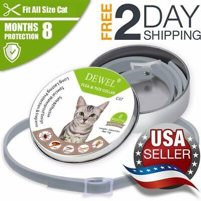 *BEST*DOGS Bayer Seresto Flea And Ticks Collar For Small & Small CATS - 8Months
