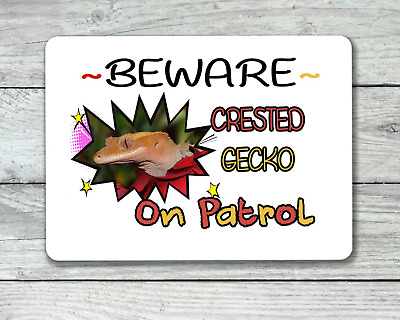 Crested gecko on patrol adorable reptile hanging or fixed sign aluminium metal