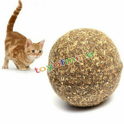Nature Mint Cat Play Toys Ball Coated with Catnip Bell Toy For Pet Kitten New