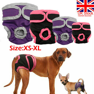 UK Female Dog Shorts Puppy Physiological Pant Diaper Pet Underwear For Girl Dog