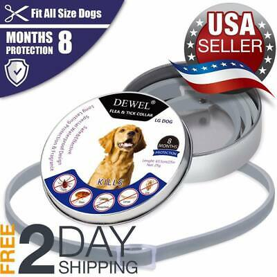 *HOT*DOGS Bayer Seresto Flea And Ticks Collar For Large & Large CATS -- 8Months